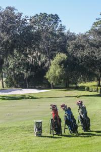 Innisbrook, Palm Harbor, Florida