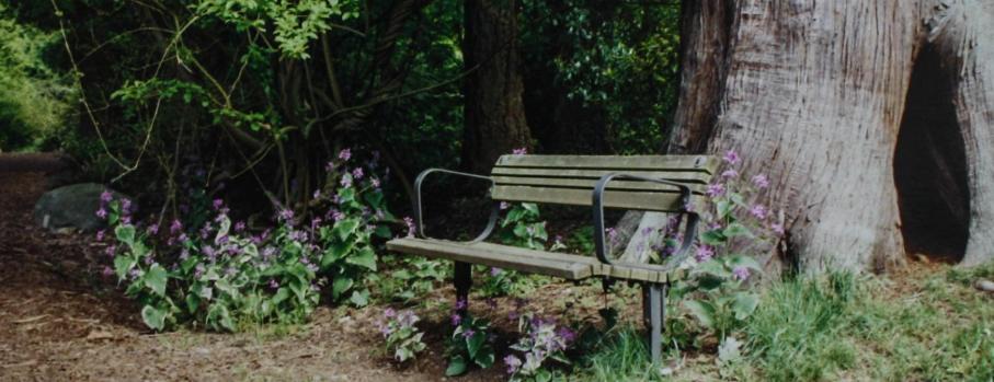 UBC, Botanic Garden, Vancouver, British Columbia