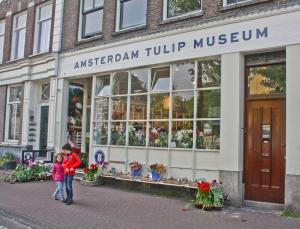 Tulip Museum, Amsterdam, the Netherlands